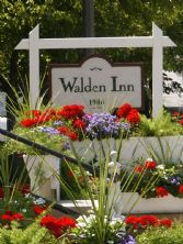 walden flowers.jpg