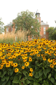 East College Flowers.jpg