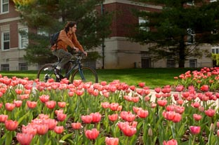 Student Bike Spring 2007.jpg