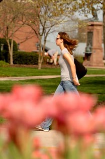 Student Tulips Spring 2007 1.jpg