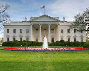 White House Flowers.jpg