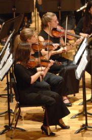 violins spring 2007.jpg