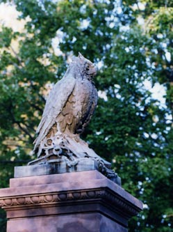 owl can044.jpg