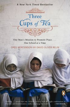 ThreeCupsofTea PromotePeacebookcover2007.JPG