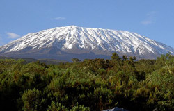 cfac_kilimanjaro.jpg
