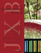 Journal-Exp-Botany-June2010.jpg