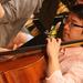 photo-Orchestra_-88.jpg