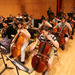 photo-Orchestra_-121.jpg