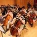 photo-Orchestra_-119.jpg