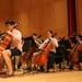 photo-Orchestra_-196.jpg