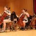 photo-Orchestra_-123.jpg