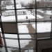 20100215_165507b.JPG