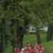 photo-177_NCAA_RAF0102.JPG
