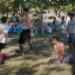 184722_20100816Mon_rf.JPG