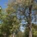15_20100908_134406_Wed_rf.JPG